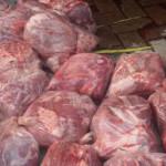 KSKP Sita 30 Ton Daging Celeng