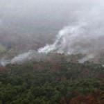 Sudah 5.000 Hektare Lahan di Lampung Terbakar