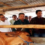 Sentra Peternakan Rakyat Akan Direalisasikan di Lampung