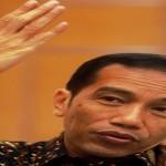 6-7 November 2015, Jokowi Kunjungi Lampung