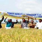 Menteri Pertanian Andi Amran Sulaiman Kunjungi Jabung Lampung Timur
