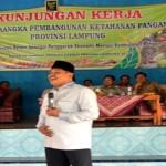 Untuk Menghalau Gajah, Warga Desa Braja Asri Lampung Timur Inginkan Jalan Tembus Menuju TNWK