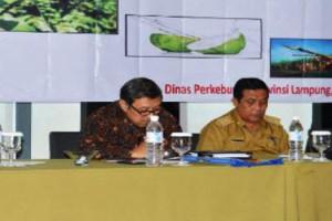 Provinsi Lampung memiliki tujuh komoditas unggulan perkebunan 2