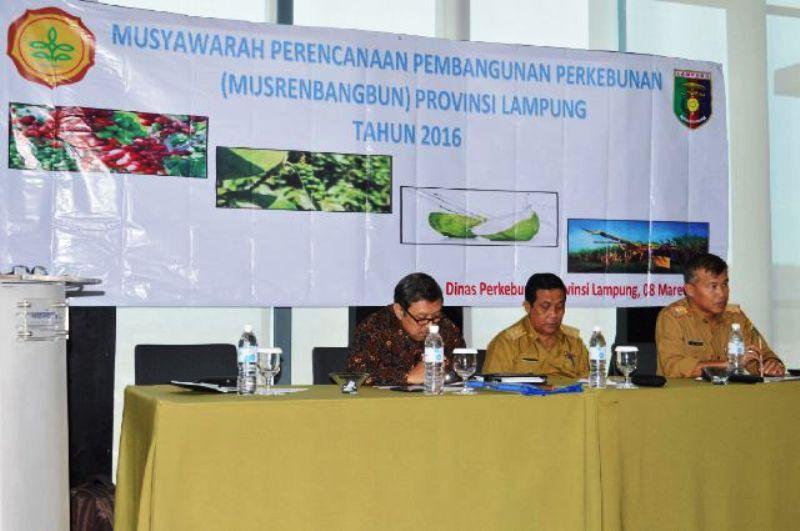 Asisten Bidang Ekbang Adeham saat membuka Musrenbang perkebunan di Bandar Lampung, (8/3).