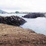 Reklamasi Pantai di Bandar Lampung Berpotensi Rusak Terumbu Karang