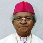 Biodata Mgr Hilarius Moa Nurak SVD