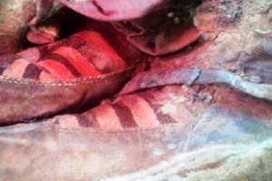 Mumi Berusia 1.500 Tahun Pakai Sepatu Bot Merek Adidas 2