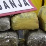 Penyelundupan Dua Ton Ganja Berhasil digagalkan Polda Lampung