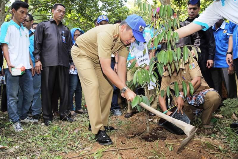 Gubernur Lampung M Ridho Ficardo saat mengawali kegiatan menanam 1000 pohon dalam rangka HUT KNPI ke- 43 di Taman Hutan Raya Wan Abdul Rachman (Tahura War), Hanura, Pesawaran, Selasa 26 Juli 2016.