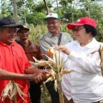 Menteri LHK Siti Nurbaya Mengajak Masyarakat Lampung Lestarikan Hutan