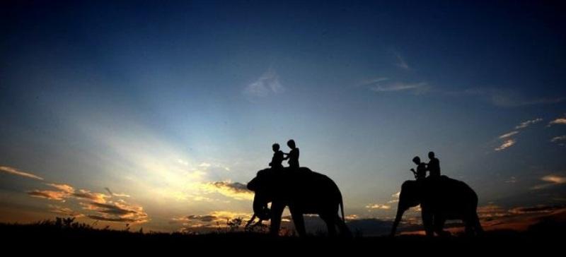 Taman Nasional Way Kambas. Foto : malahayati.ac.id