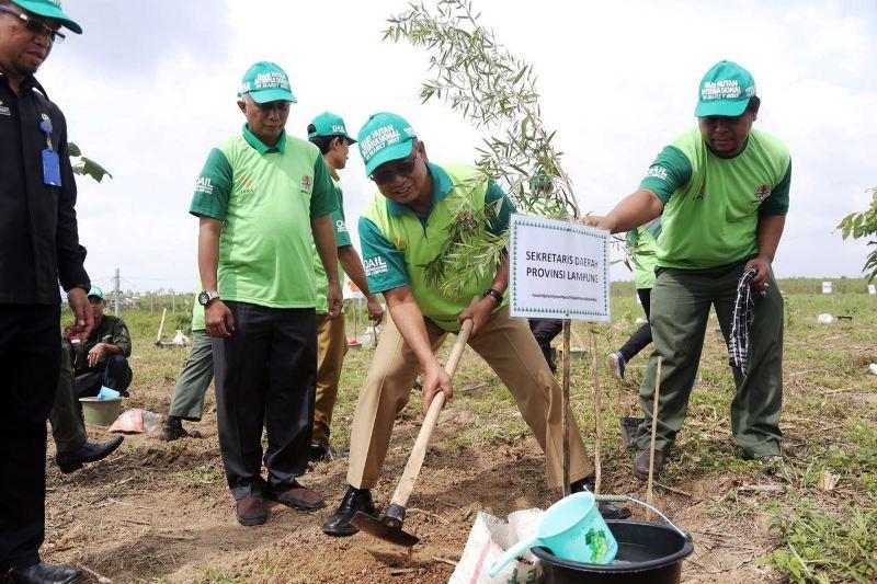Sekretaris Daerah Provinsi Lampung Sutono saat menanam pohon di Itera, Selasa 21 Maret 2017.