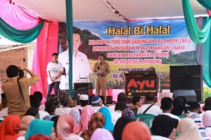 Kepala Dinas Ketahanan Pangan Provinsi Lampung, Ir. Kusnardi, pada halal bihalal PUMP di Desa Sidosari, Kecamatan Natar, Lampung Selatan, Selasa 25 Juli 2017