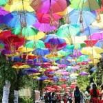 Festival Payung 2017 Jadi Ajang Swafoto Massal