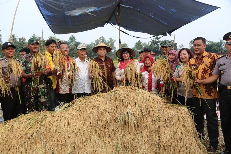 Gubernur Lampung M Ridho Ficardo (tengah)