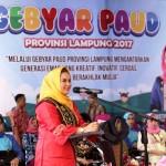 Yustin Ficardo: Bangun Enggal Elephant Park, Gubernur Wujudkan Provinsi Lampung Ramah Anak
