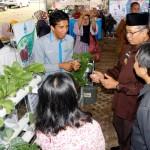Lampung Berhasil Turunkan Konsumsi Beras dan Gizi Buruk