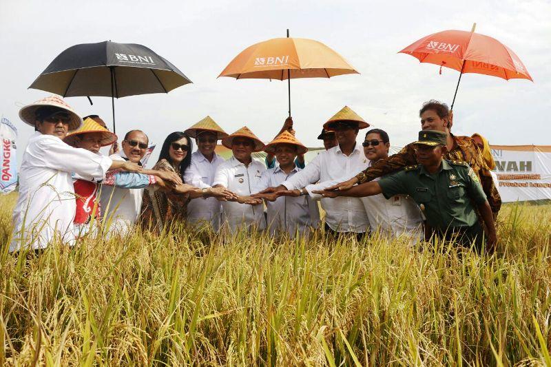 Kunjungan Kementerian Desa Pembangunan Daerah Tertinggal dan Transmigrasi, di KTM Desa Tanjung Mas Rejo dan Desa Wonosari Kecamatan Mesuji Timur, Sabtu 07 Oktober 2017.