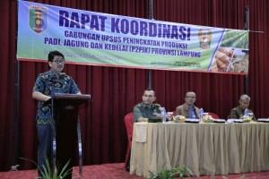 Plt. Sekretaris Daerah Provinsi Lampung, Hamartoni Ahadis saat memberikan sambutan Rapat Koordinasi Evaluasi Kinerja 2017 dan Pelaksanaan Program/Kegiatan Pembangunan Tanaman Pangan dan Hortikultura Tahun 2018, di Hotel Horison Ruang Tanggamus II, Jumat 19 Januari 2018.