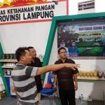 Dinas Ketahanan Pangan Provinsi Lampung Pamerkan Produk Pangan Unggulan di Kota Banjarbaru, Kalimantan Selatan