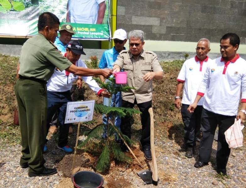 Pulihkan DAS, Pemprov Lampung dan PLN Tanam Pohon di Tahura WAR.