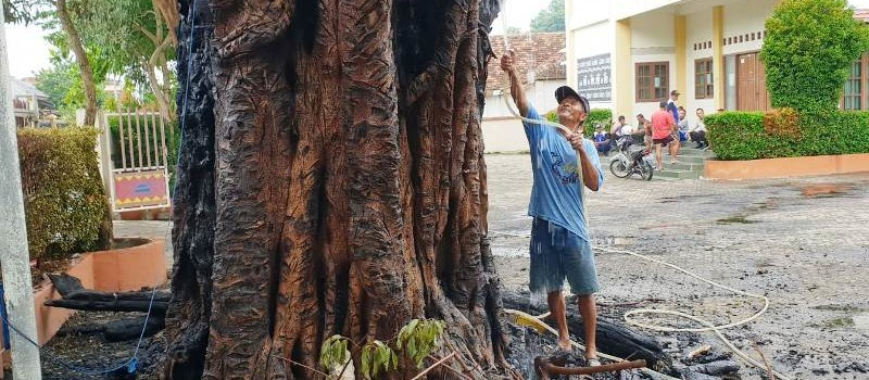 Tersambar Petir, Pohon Beringin di depan Gereja Katolik Santo Yohanes Rasul Kedaton Terbakar, Jumat, 07 Desember 2018. Foto : Robert/Radio Suara Wajar Bandar Lampung.