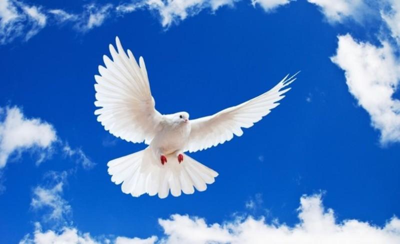Ilustarasi roh kudus. (Sumber foto : winapambudi.com)