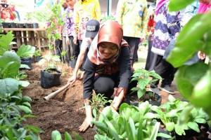 Wagub Nunik saat menanam cabai di Kampung Sinar Harapan, Kelurahan Rajabasa Jaya, Kecamatan Rajabasa, Kamis (12/12/2019).