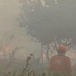 Kebakaran Lahan Kepung Kota