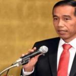 Jokowi Yakin Ketahanan Pagan di Indonesia Akan Cepat Terwujud