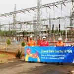 PGN Siap Pasok Gas Bumi Bantu PLN Tingkatkan Saluran Listrik di Lampung