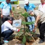 PLN Tanam 22.000 Pohon di Hari Menanam Pohon Indonesia 2018